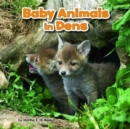 Image for Baby animals in dens