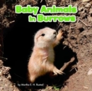 Image for Baby animals in burrows