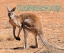 Image for Meet Desert Animals Pack A of 4