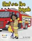 Image for Chief of the fire brigade