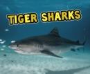 Image for Tiger sharks