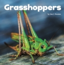 Image for Grasshoppers