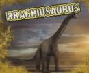 Image for Brachiosaurus