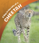 Image for A day in the life of a cheetah