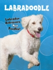Image for Labradoodle  : Labrador retrievers meet poodles!