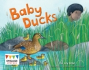 Image for Baby ducks