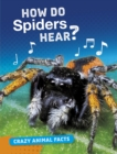 Image for How do spiders hear?