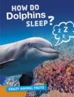 Image for How Do Dolphins Sleep?