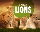 Image for A Pride of Lions