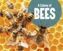 Image for A colony of bees