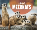 Image for A Mob of Meerkats