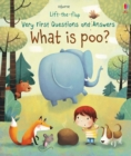 Image for What is poo?