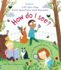 Image for How do I see?  : and other questions about our senses