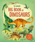Image for The Usborne big book of dinosaurs
