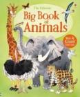 Image for The Usborne big book of animals