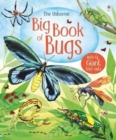 Image for The Usborne big book of bugs