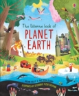 Image for The Usborne book of planet Earth