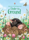 Image for Under the ground
