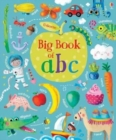 Image for The Usborne big book of abc
