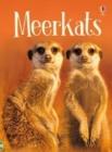 Image for Meerkats
