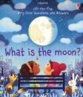 Image for What is the moon?