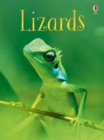 Image for Lizards