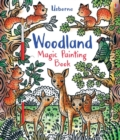 Image for Woodland Magic Painting Book