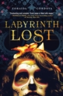 Image for Labyrinth lost