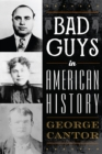 Image for Bad guys in American history