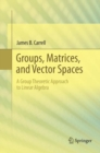 Image for Groups, Matrices, and Vector Spaces : A Group Theoretic Approach to Linear Algebra