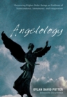 Image for Angelology