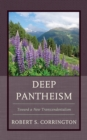 Image for Deep pantheism  : toward a new transcendentalism