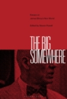 Image for The big somewhere: essays on James Ellroy's noir world