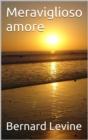 Image for Meraviglioso amore