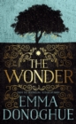 Image for The wonder