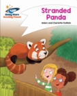 Image for Stranded panda