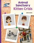 Image for Kitten crisis