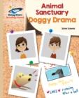 Image for Doggy drama