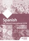 Image for Edexcel international GCSE Spanish grammar. : Workbook