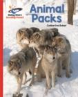 Image for Animal packs