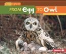 Image for From Egg to Owl