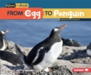 Image for From Egg to Penguin