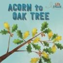 Image for Acorn to oak tree