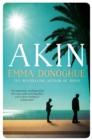 Image for Akin  : a novel
