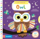 Image for My magical owl