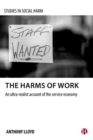 Image for The harms of work  : an ultra-realist account of the service economy