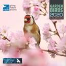Image for RSPB BRITISH GARDEN BIRDS W 2020