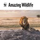 Image for WWF Amazing Wildlife Square Wall Calendar 2020