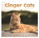 Image for Ginger Cats Square Wall Calendar 2022