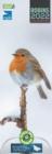 Image for RSPB Robins Slim Calendar 2022